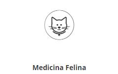 Medicina Felina SERVICIOS VETERINARIOS SEVILLA